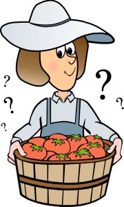 Charlotte answers vegetable gardening questions