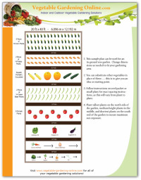 20 X 40 Free Vegetable Garden Plan