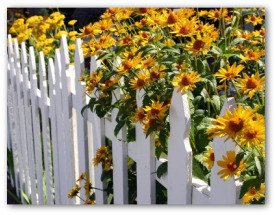 Fencing To Keep Unwanted Animals Out Of Your Garden Home Design Idea