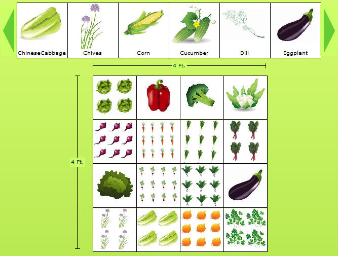 4 x 4 sample vegetable garden plan