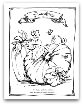 Free vegetable garden coloring books printable activity for Pumpkin seed coloring page