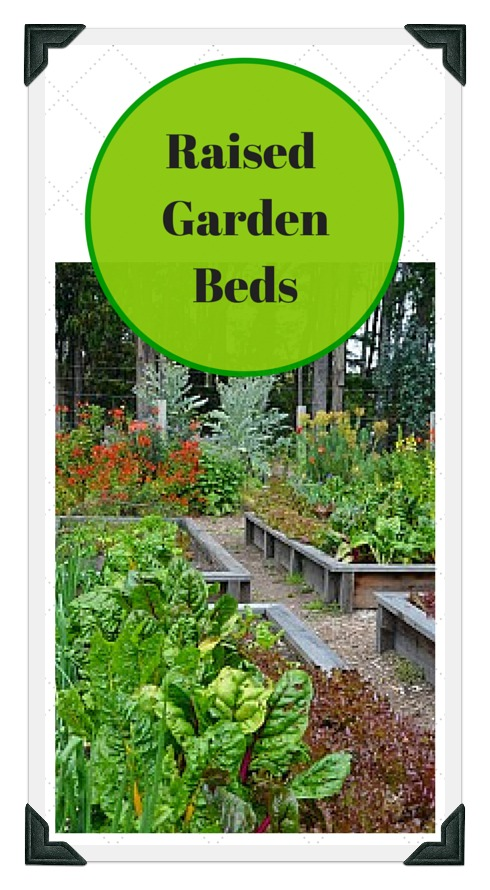 raised vegetable garden examples and ideas