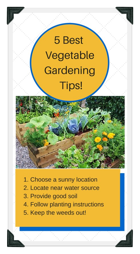 5 Best Tips For. Raised Bed Gardening Success!