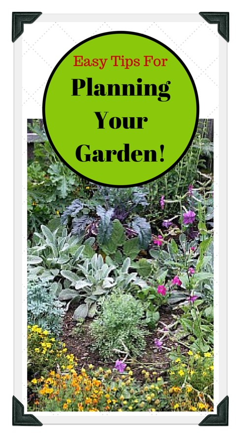 vegetable garden pictures to help plan a garden
