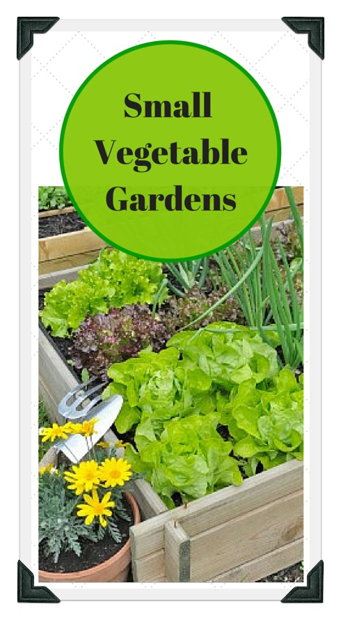Small vegetable garden plans and ideas for Small vegetable garden