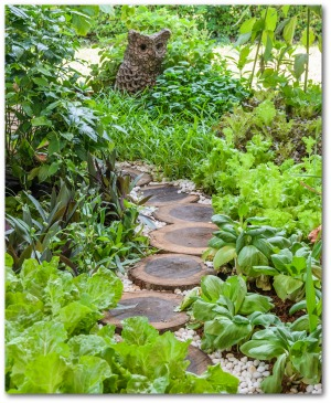 Vegetable Border Along Garden Path