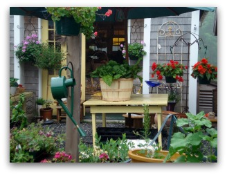 beautiful patio mixed vegetable and flower container garden