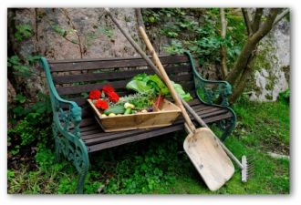 best time to plant a vegetable garden