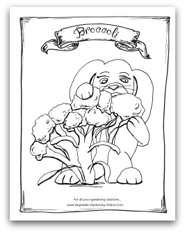 printable broccoli coloring page