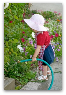 watering a small vegetable garden