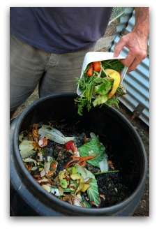 compost ingredients for organic fertilizer