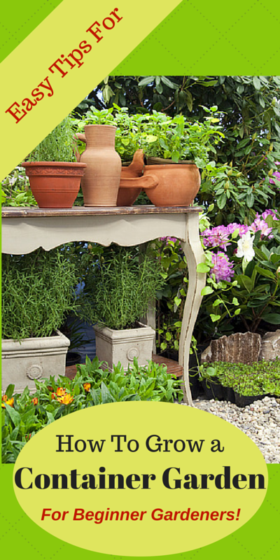 5 easy tips for container ve able gardens