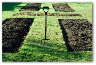preparing soil for a vegetable garden - Vegetable Garden Design
