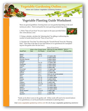 Vegetable Planting Guide