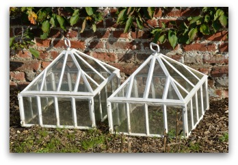 garden cloches extend growing season for vegetables
