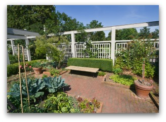 Patio Vegetable Garden with Raised Beds and Containers
