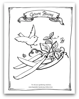 Free Vegetable Garden Coloring Books Printable Activity Pages For Free Coloring Pages For