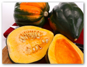 growing acorn squash