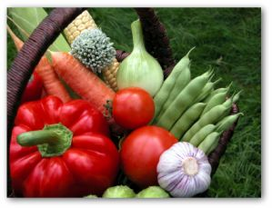 fresh vegetable variety
