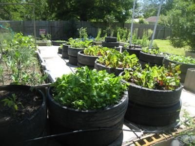 recycled tire garden ideas