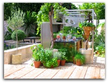 How to Create a Small Organic Garden