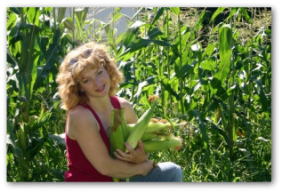 How to Grow Sweet Corn in Your Vegetable Garden
