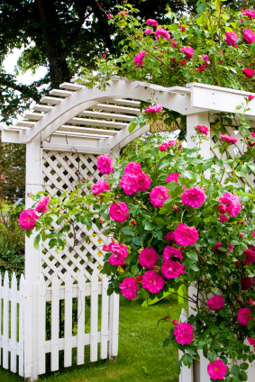 White Garden Fence With Arbor