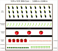 Vegetable Garden Layout Ideas unusual idea best vegetable garden design garden layout and design plans landscape ideas also layouts Free Ten By Ten Garden Plan Including Corn