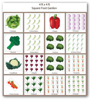 Raised bed vegetable garden layout ideas for Square foot garden designs