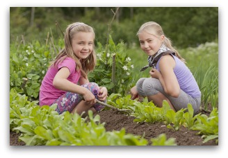 benefits of making a vegetable garden