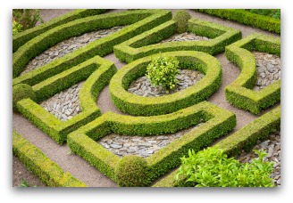 Knot Garden Design Example