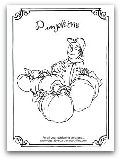 Scarecrow and Pumpkins Printable Coloring Page