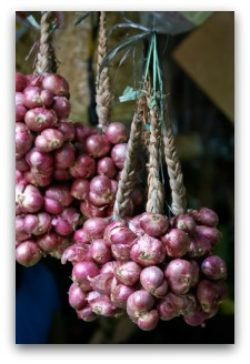 braiding onions for storage