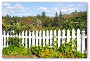 white wooden picket  garden fence