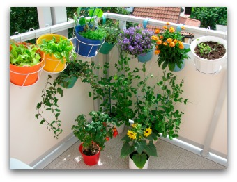Colorful Balcony Container Garden