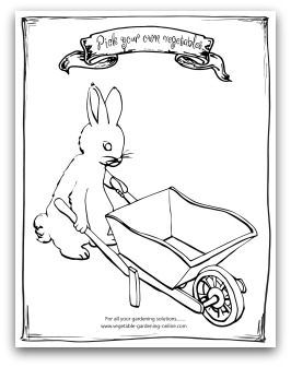 Printable Bunny with Draw Your Own Vegetables Page