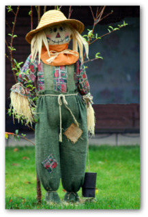 homemade scarecrow near the garden