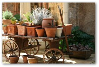 potted container garden on a wooden wagon