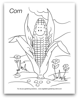 Preschool Tomato Coloring Page Art And Learning Activities