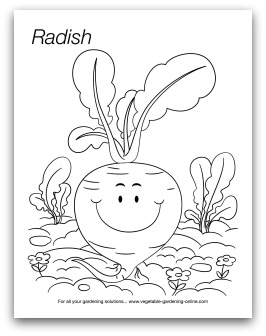 preschool art and learning activities preschool radish coloring page