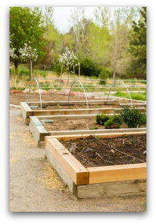 Stacked 4 by 4s Make Easy DIY Raised Bed