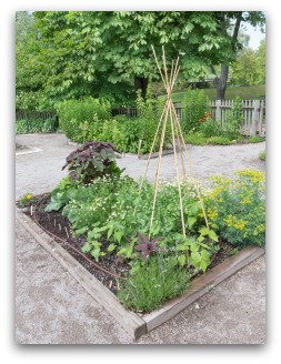 Herb Garden Design Examples basic vegetable garden design plans and tips