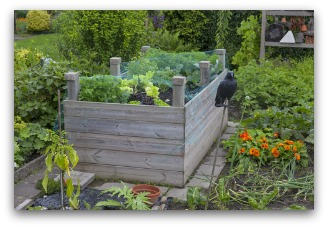 tall easy to build raised bed idea - Vegetable Garden Ideas Designs Raised Gardens