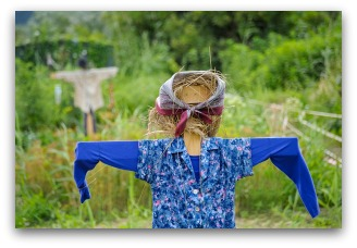 garden scarecrow with scarf
