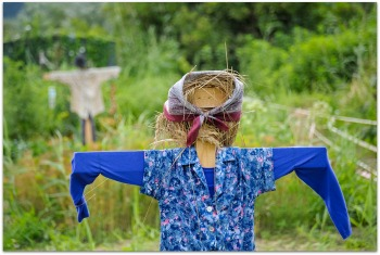 cute easy to build scarecrow idea