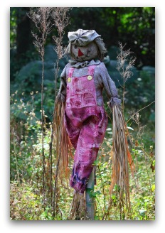 garden scarecrow with purple overalls