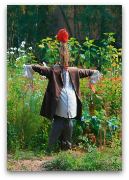 fun scarecrow for the garden