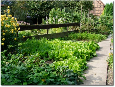 vegetable garden fencing ideas - Vegetable Garden Fence Ideas