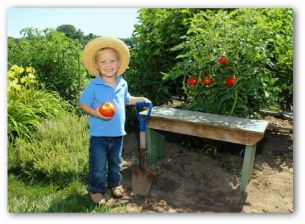 young gardener in a vegetable garden