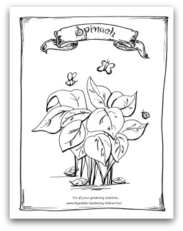 Free Vegetable Garden Coloring Books, Printable Activity Pages for ...